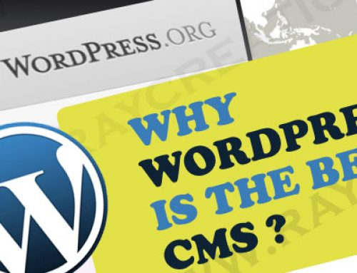 Why Is WordPress The Most Used CMS In The World?