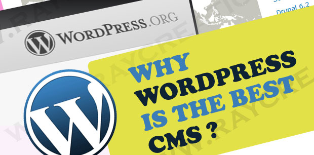 Why wordpress is best CMS