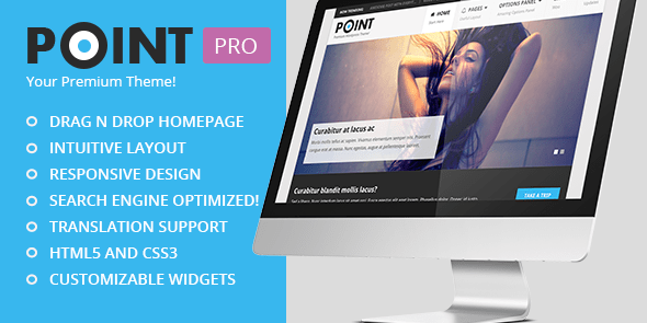 Point Pro Theme Review: Ideal WordPress Theme For Money Sites & Niche Blogs